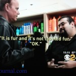 Not_Labeled_Fur