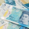 tallow-in-money