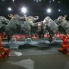 ringling brothers circus ends